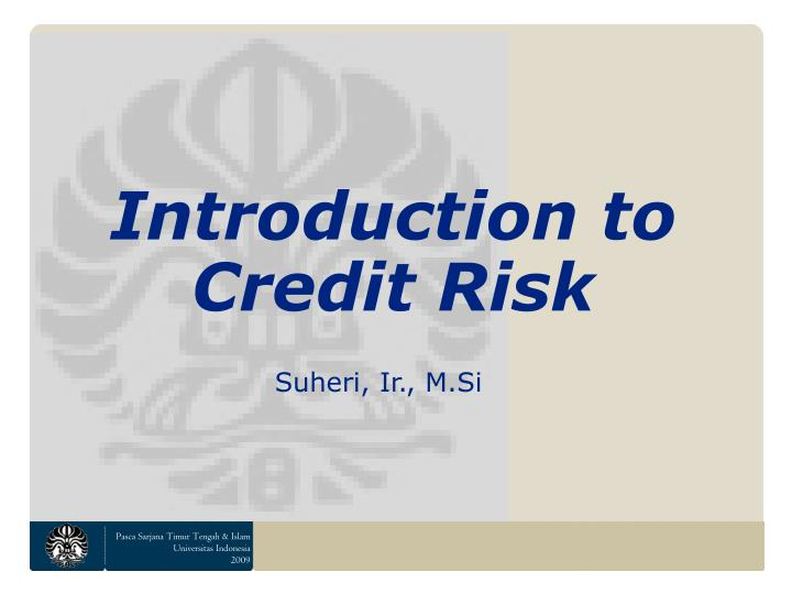 introduction to credit risk n.
