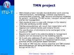 tmn project