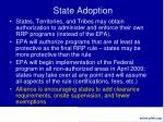 state adoption