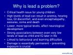 why is lead a problem