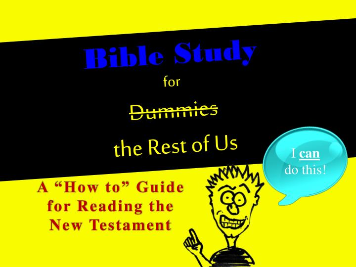 bible study for dummies the rest of us n.