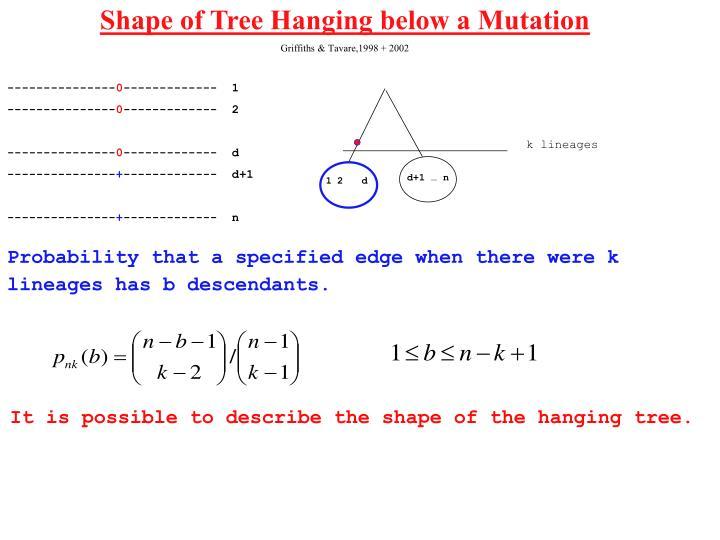 Shape of Tree Hanging below a Mutation