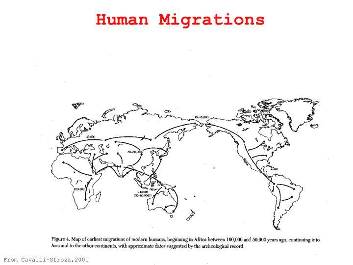 Human Migrations