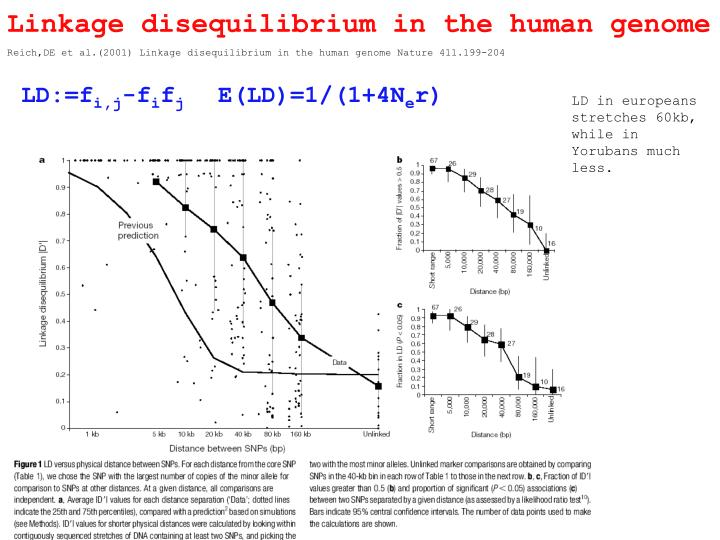 Linkage disequilibrium in the human genome