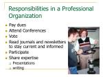 responsibilities in a professional organization