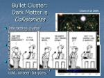 bullet cluster dark matter is collisionless