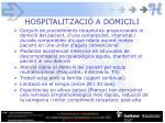 hospitalitzaci a domicili
