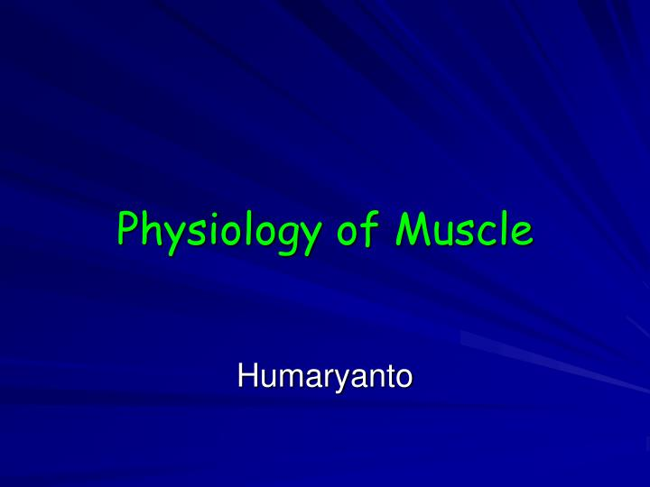physiology of muscle n.