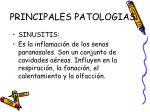 principales patologias14