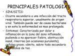 principales patologias16
