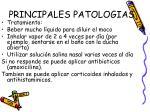 principales patologias17