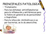 principales patologias3