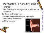 principales patologias4