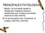 principales patologias5