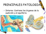 principales patologias7