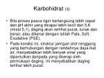 karbohidrat 3