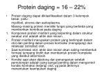 protein daging 16 22