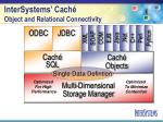intersystems cach object and relational connectivity