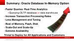 summary oracle database in memory option