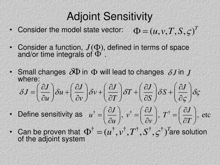 Adjoint Sensitivity