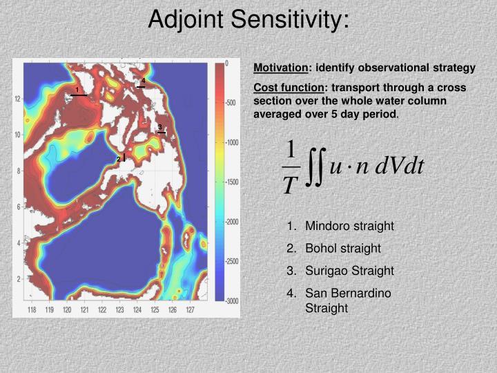 Adjoint Sensitivity: