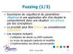 fuzzing 1 3