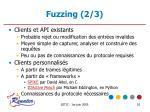 fuzzing 2 3