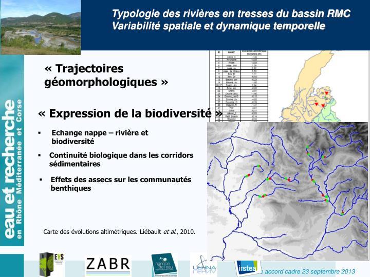 Typologie des rivières en tresses du bassin RMC