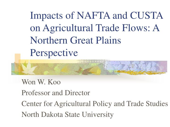 impacts of nafta and custa on agricultural trade flows a northern great plains perspective n.