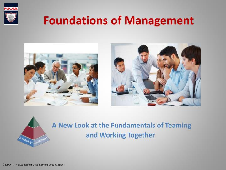 foundations of management n.