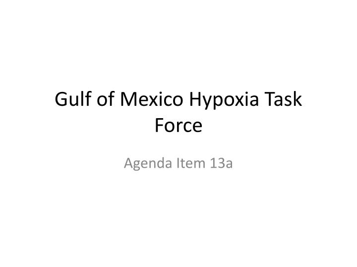 gulf of mexico hypoxia task force n.