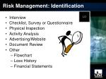 risk management identification