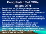 penglibatan sel cd8 dalam dth