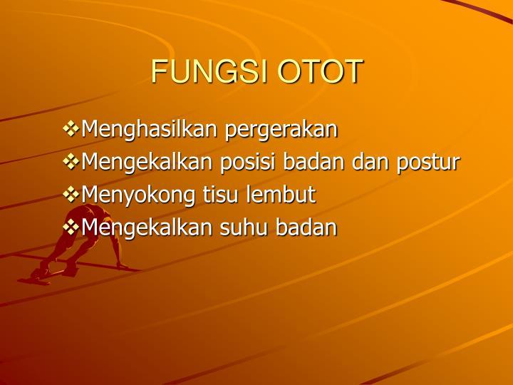 FUNGSI OTOT