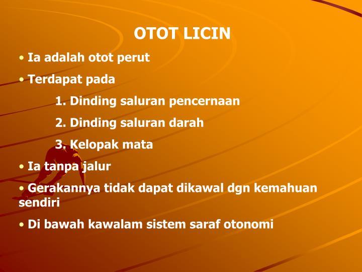 OTOT LICIN