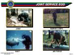 joint service eod