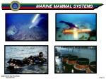 marine mammal systems