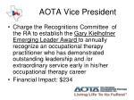 aota vice president