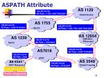 aspath attribute