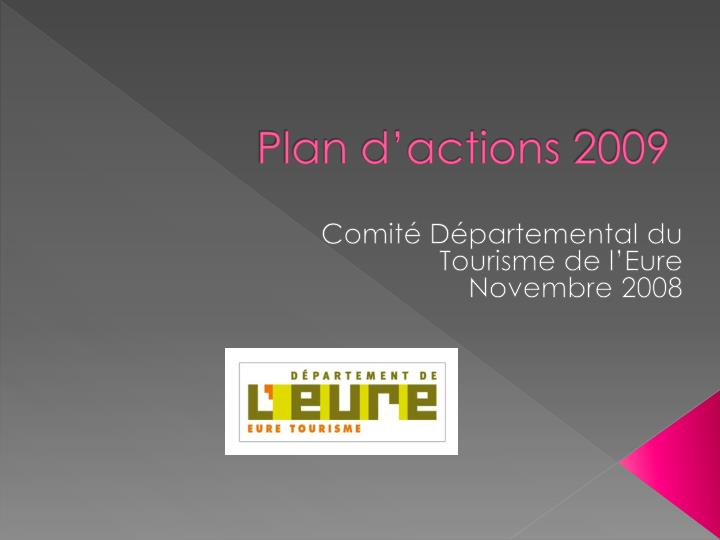 plan d actions 2009 n.