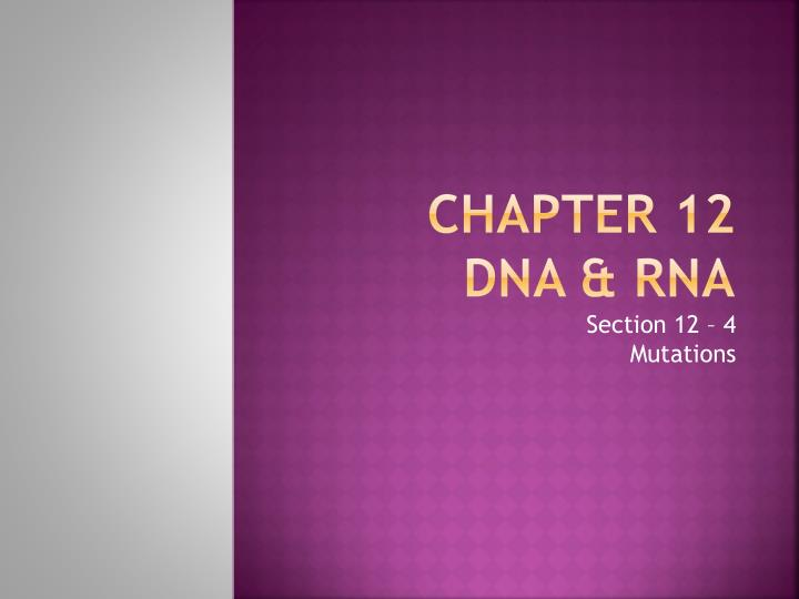 chapter 12 dna rna n.