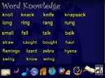 word knowledge 3