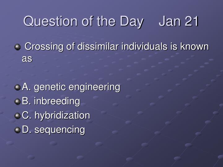 question of the day jan 21 n.