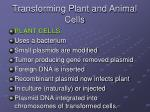 transforming plant and animal cells