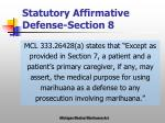 statutory affirmative defense section 8