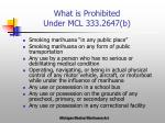 what is prohibited under mcl 333 2647 b