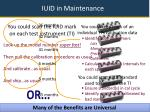 iuid in maintenance