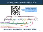 turning a data matrix into an iuid