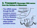 2 transport messenger rna moves from the nucleus to ribosomes