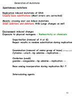 generation of mutations
